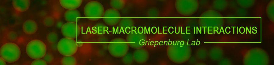Laser Macromolecule Interactions